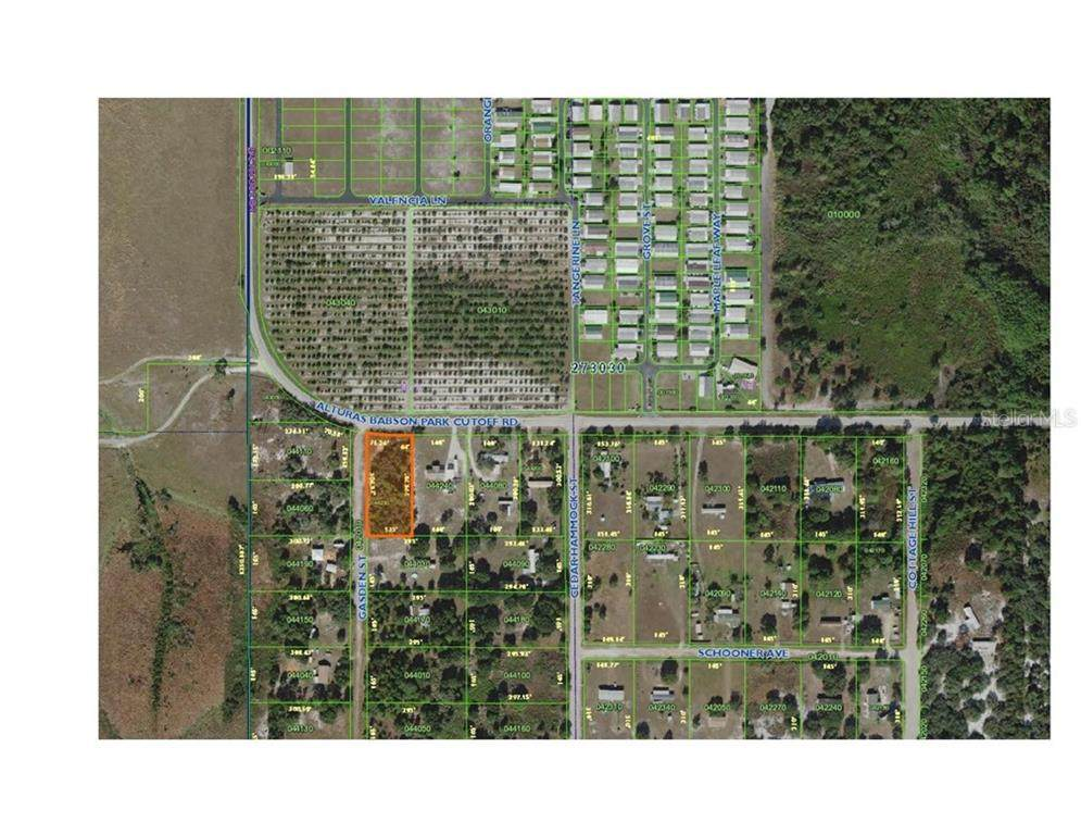 0 ALTURAS BABSON PARK CUT OFF RD LAKE WALES - Photo 1