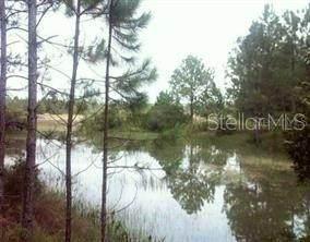 Alloy Street, Webster, FL 33597 (MLS #O5913401) :: Everlane Realty