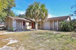 8151 Village Green Road, Orlando, FL 32818 (MLS #O5914602) :: Everlane Realty