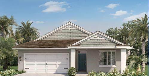 2899 Harmonia Hammock Road, Saint Cloud, FL 34773 (MLS #O5915010) :: Team Buky