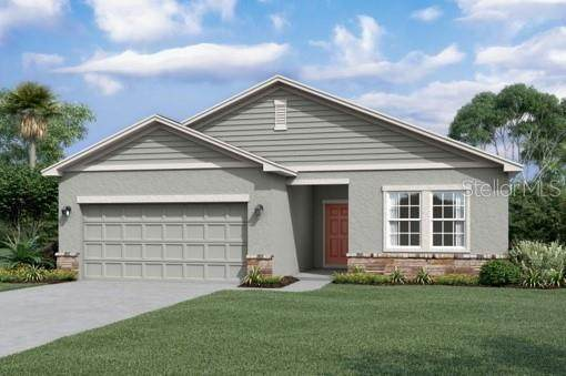 34783 Daisy Meadow Loop - Photo 1