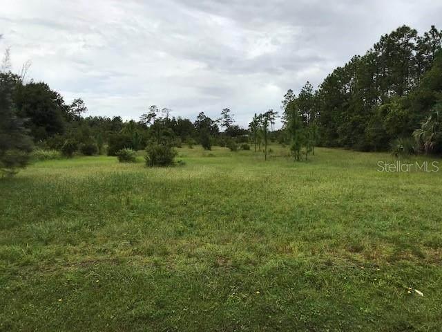 852 Belvedere Rd, Orlando, FL 32820 (MLS #O5916151) :: Pepine Realty