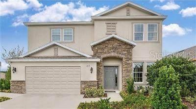 919 Berry Leaf Court, Apopka, FL 32703 (MLS #O5918003) :: Armel Real Estate