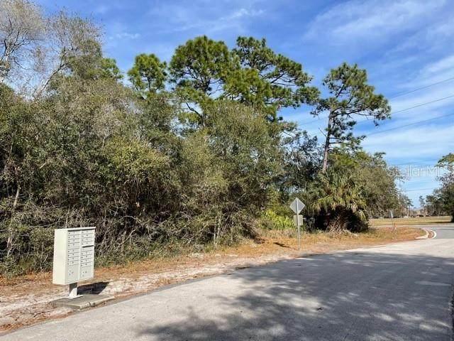 Howland Boulevard, Deltona, FL 32738 (MLS #O5918720) :: Pepine Realty
