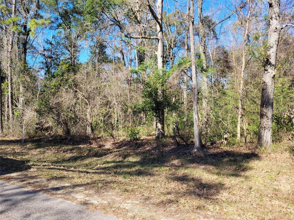 Lot 41 Nw 129Th St - Photo 1