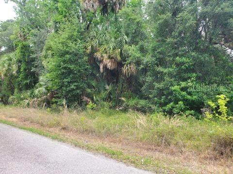 Still Road, Pierson, FL 32180 (MLS #O5923300) :: Bridge Realty Group