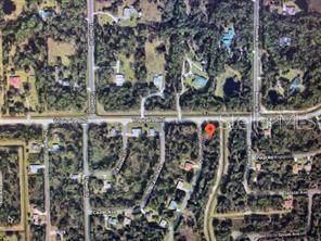 Wagon Wheel Drive, North Port, FL 34291 (MLS #O5923975) :: BuySellLiveFlorida.com