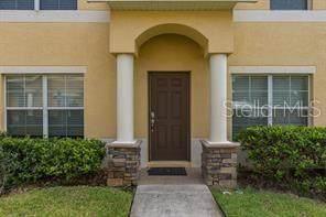 Trinity, FL 34655 :: CGY Realty