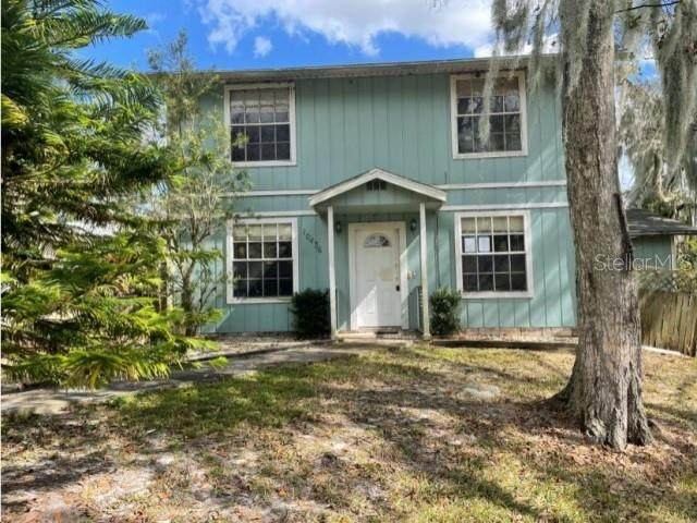 10436 George Smith Road, Lithia, FL 33547 (MLS #O5924962) :: The Brenda Wade Team