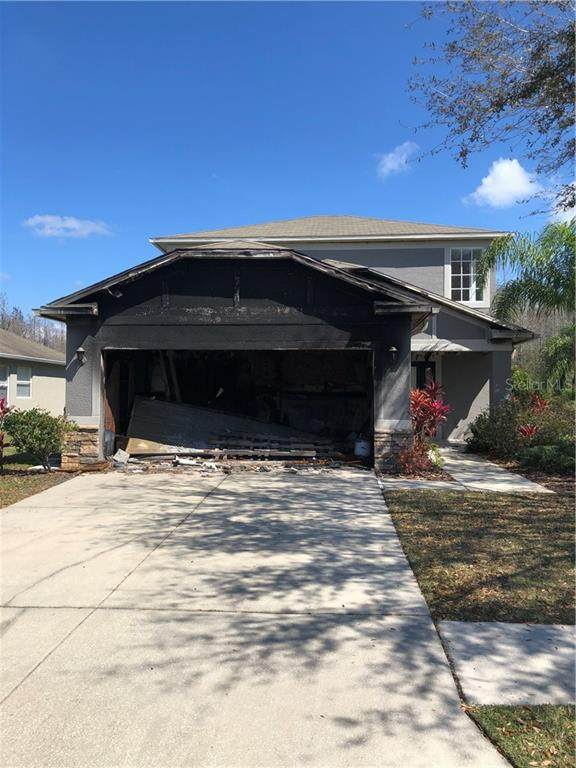3112 Donington Castle Lane, Land O Lakes, FL 34638 (MLS #O5926419) :: Bridge Realty Group