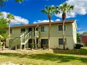 7344 Swallow Run #7344, Winter Park, FL 32792 (MLS #O5927011) :: Young Real Estate