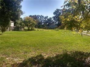 2331 S Rio Grande Avenue, Orlando, FL 32805 (MLS #O5928807) :: Keller Williams Realty Peace River Partners
