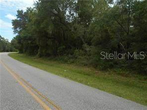 NE 353 NE Hwy NE, Old Town, FL 32680 (MLS #O5929243) :: Vacasa Real Estate