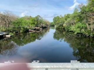 13627 W Foss Groves Path, Inglis, FL 34449 (MLS #O5933263) :: Premium Properties Real Estate Services