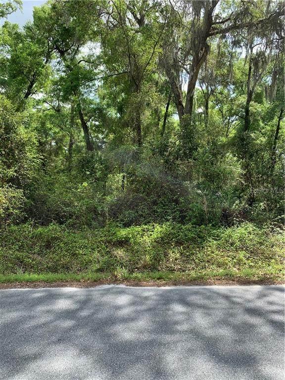 286 NE 596 Avenue, Old Town, FL 32680 (MLS #O5935683) :: Everlane Realty