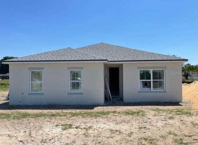 12524 Chip Drive, Grand Island, FL 32735 (MLS #O5936382) :: Premium Properties Real Estate Services
