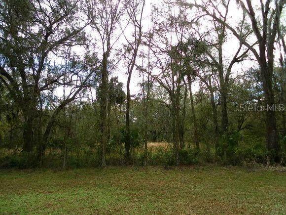 38924 Pattie Road, Zephyrhills, FL 33540 (MLS #O5937013) :: Team Borham at Keller Williams Realty