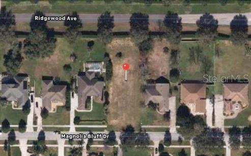 16337 Magnolia Bluff Drive, Montverde, FL 34756 (MLS #O5939057) :: The Posada Group at Keller Williams Elite Partners III