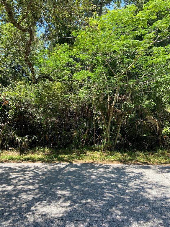 Spring Avenue Lot 1, Oviedo, FL 32765 (MLS #O5939542) :: Rabell Realty Group