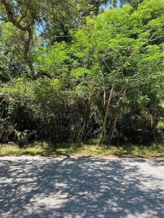 Spring Avenue Lot 1, Oviedo, FL 32765 (MLS #O5939542) :: Tuscawilla Realty, Inc