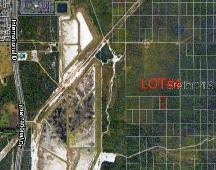 Lot 4 S International Drive, Orlando, FL 32821 (MLS #O5941583) :: Charles Rutenberg Realty