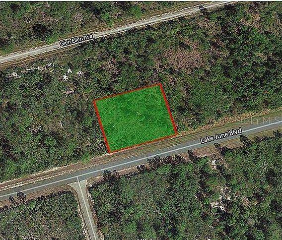 3353 Lake June Boulevard, Lake Placid, FL 33852 (MLS #O5942375) :: Bustamante Real Estate