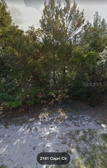 2161 Capri Circle, Deltona, FL 32738 (MLS #O5942772) :: The Nathan Bangs Group