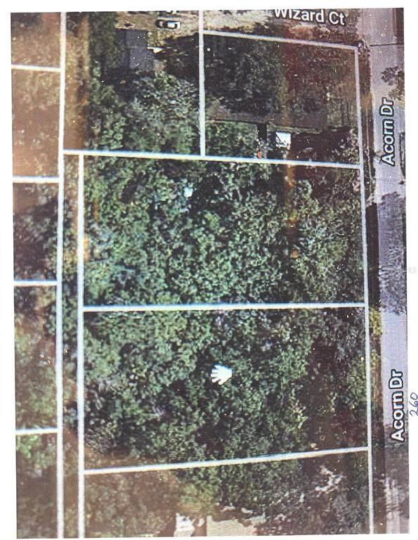 260 Acorn Drive, Longwood, FL 32750 (MLS #O5942992) :: Expert Advisors Group