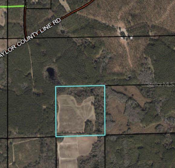 SW Taylor County Line Road, Greenville, FL 32331 (MLS #O5946538) :: Expert Advisors Group