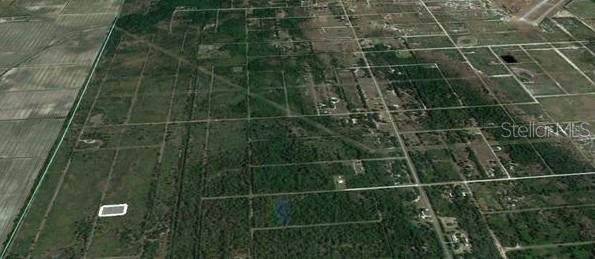 1825 Bear Bryant Road, Avon Park, FL 33825 (MLS #O5947844) :: Vacasa Real Estate