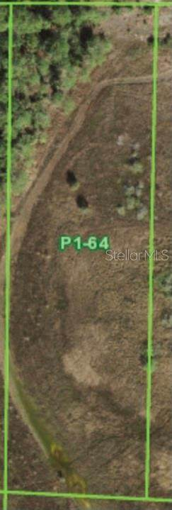 31391 Oil Well Road - Photo 1