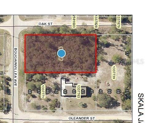 0 Oak Street, Paisley, FL 32767 (MLS #O5950622) :: Zarghami Group