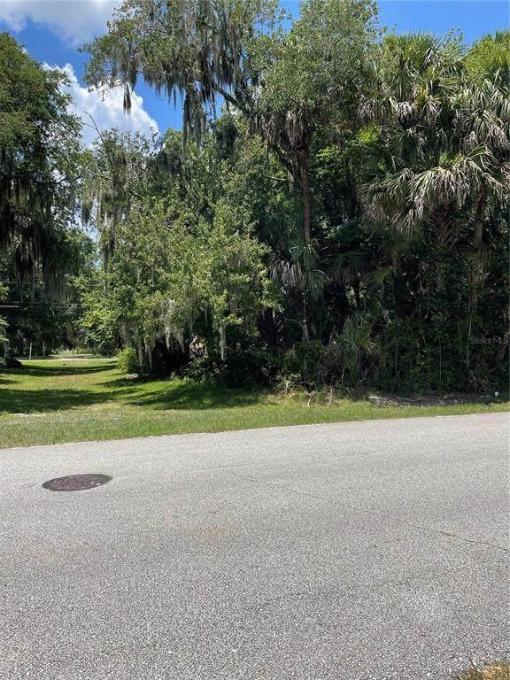 Juniper Drive, Edgewater, FL 32141 (MLS #O5951483) :: Bustamante Real Estate