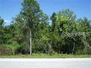 Commonwealth Avenue, Polk City, FL 33868 (MLS #O5952325) :: Globalwide Realty