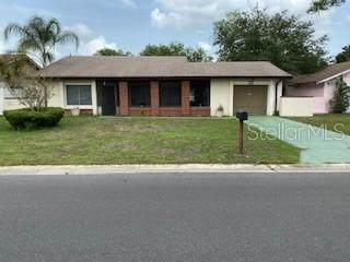 25 S Flag Court, Kissimmee, FL 34759 (MLS #O5953508) :: Armel Real Estate