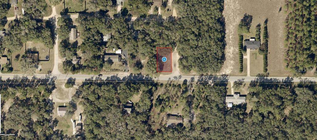 Lake Griffin Road - Photo 1