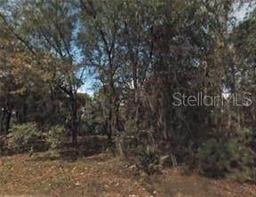 6524 N Cherrytree Terrace, Hernando, FL 34442 (MLS #O5956321) :: Globalwide Realty