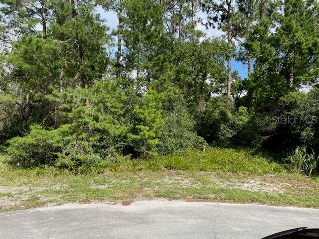 3061 Hoban Court, Deltona, FL 32738 (MLS #O5957043) :: Your Florida House Team