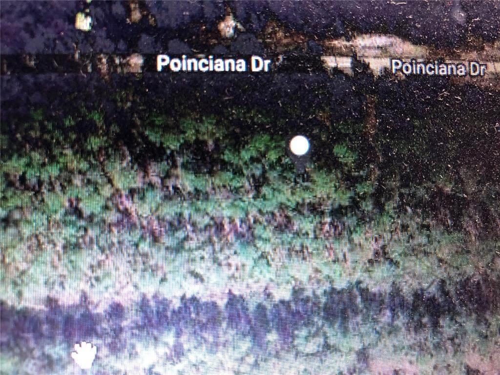 1013 Poinciana Drive - Photo 1