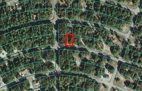 53 Fisher Way Drive, Ocklawaha, FL 32179 (MLS #O5958671) :: Cartwright Realty