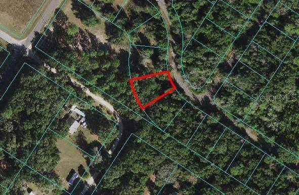 Lot 20 Bay Court Pass, Ocklawaha, FL 32179 (MLS #O5958837) :: Cartwright Realty