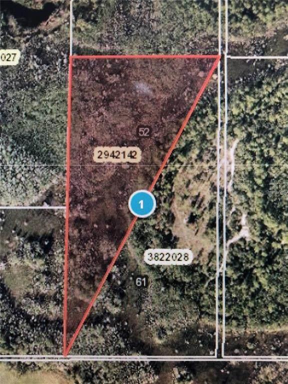 Ventura Acres Road, Groveland, FL 34736 (MLS #O5961003) :: Griffin Group