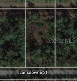 Lansdowne Street, Orlando, FL 32833 (MLS #O5961288) :: The Heidi Schrock Team