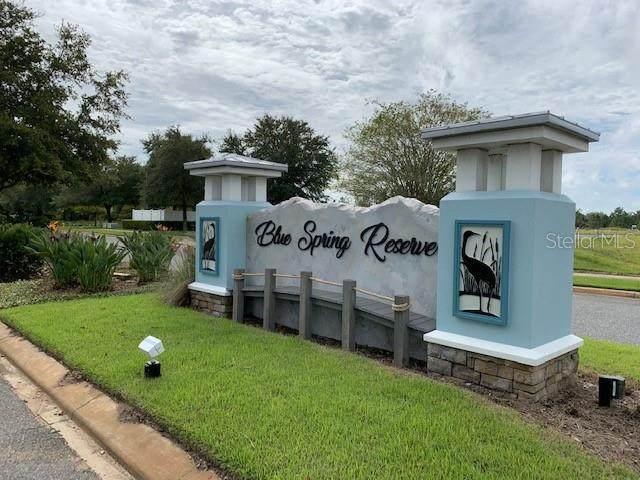 464 Long And Winding Road, Groveland, FL 34737 (MLS #O5963082) :: Everlane Realty