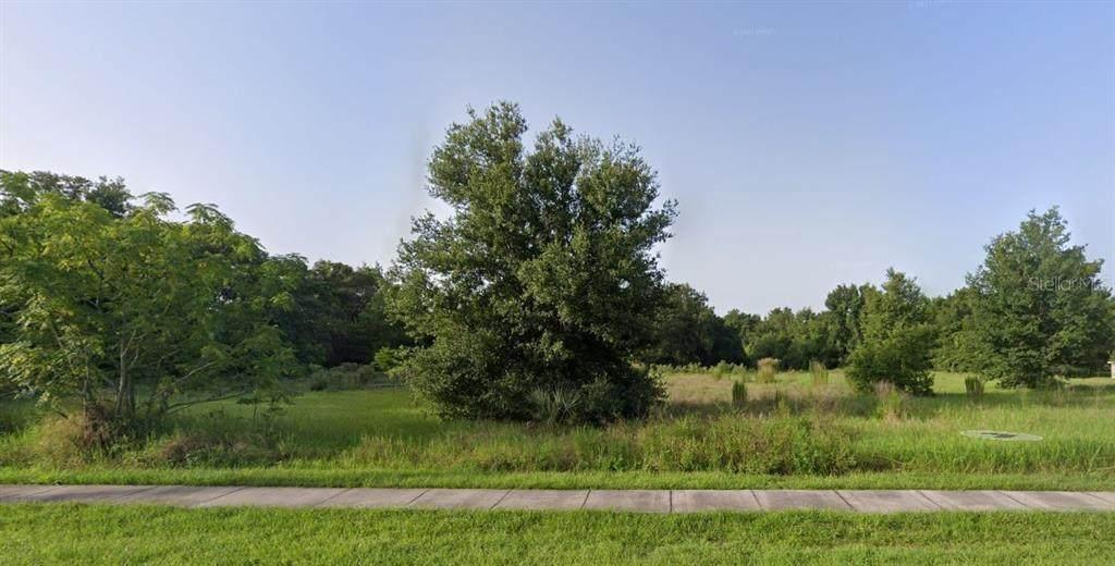 10502 Moore Road - Photo 1