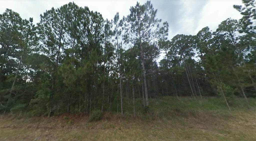 606 Tropicana Drive - Photo 1