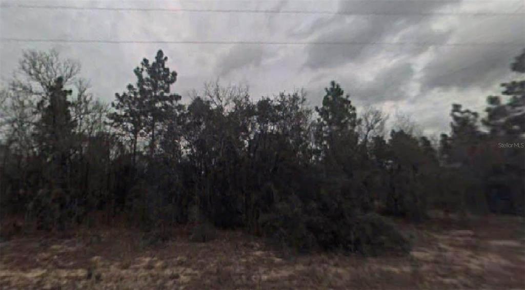 3851 Wilburton Drive - Photo 1