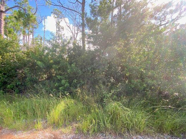 2770 SE Peralta Drive, Palm Bay, FL 32909 (MLS #O5971989) :: Your Florida House Team