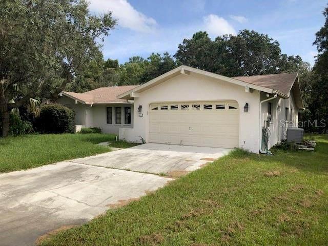 64 Lone Pine Street, Homosassa, FL 34446 (MLS #O5972696) :: Zarghami Group