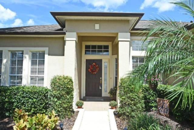 3441 Sterling Lake Circle, Oviedo, FL 32765 (MLS #O5973391) :: Everlane Realty